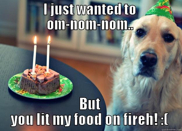 I JUST WANTED TO OM-NOM-NOM.. BUT YOU LIT MY FOOD ON FIREH! :( Sad Birthday Dog
