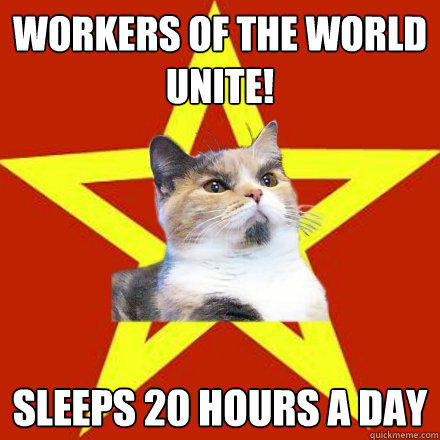 Workers of the world unite! sleeps 20 hours a day  Lenin Cat