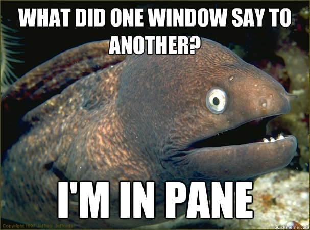 What did one window say to another? i'm in pane - What did one window say to another? i'm in pane  Bad Joke Eel