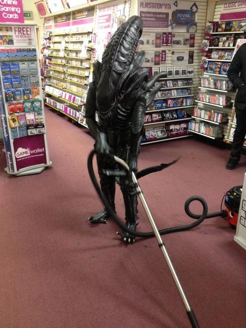 Damn illegal aliens stealing our jobs. -   Misc