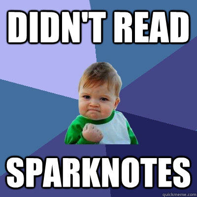 Didn't READ SPARKNOTES - Didn't READ SPARKNOTES  Success Kid