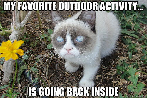 my favorite outdoor activity... is going back inside