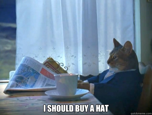 i should buy a hat -  i should buy a hat  The One Percent Cat