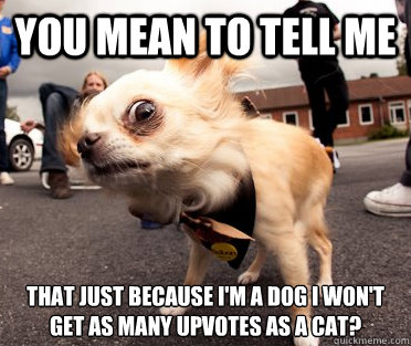 You mean to tell me That just because I'm a dog I won't get as many upvotes as a cat? - You mean to tell me That just because I'm a dog I won't get as many upvotes as a cat?  Skeptical Dog