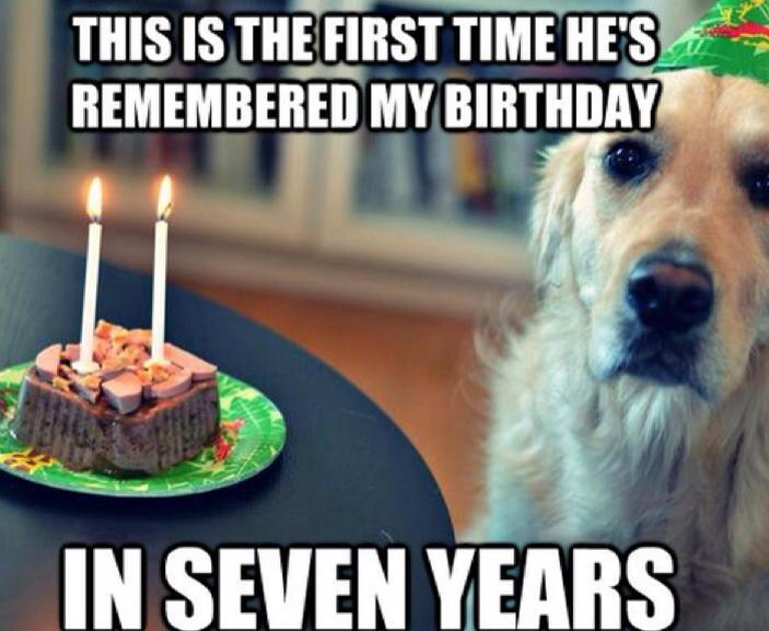 A Dog's life...  -   Misc