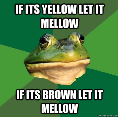 if its yellow let it mellow if its brown let it mellow - if its yellow let it mellow if its brown let it mellow  Foul Bachelor Frog