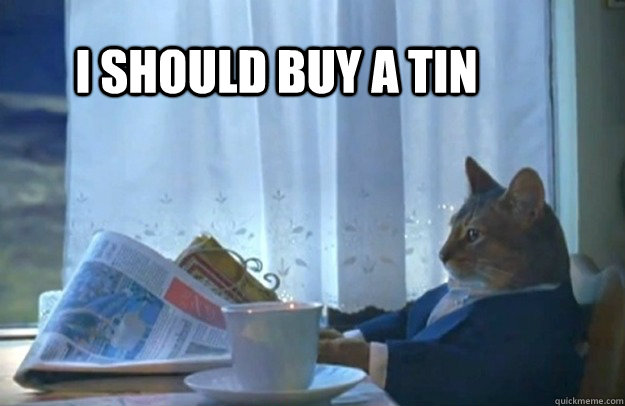 I should buy a tin - I should buy a tin  Sophisticated Cat