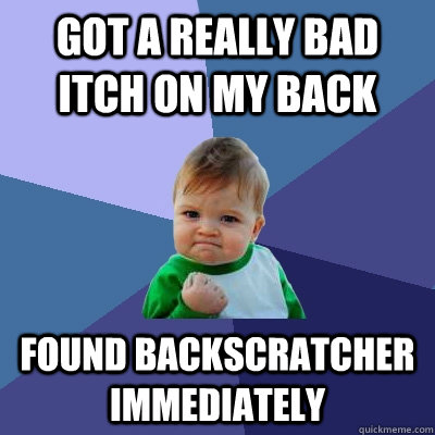 Got a really bad itch on my back Found backscratcher immediately - Got a really bad itch on my back Found backscratcher immediately  Success Kid