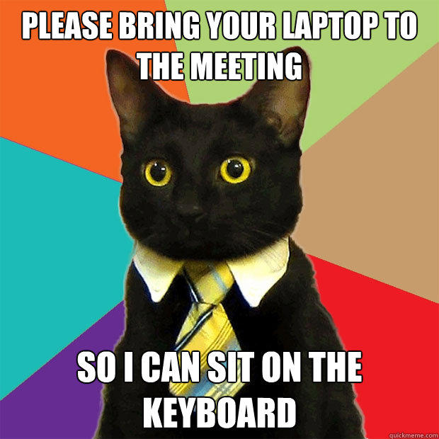 please bring your laptop to the meeting so i can sit on the keyboard - please bring your laptop to the meeting so i can sit on the keyboard  Business Cat