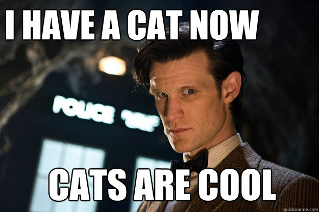 I have a cat now  cats are cool  Doctor Who Bow tie