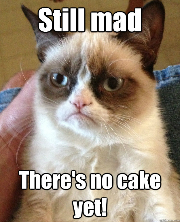 35a57b051977561c94a1816da8ade647fdc7d669b04e38ed07bc4c18ab98032c still mad there's no cake yet! angry cat quickmeme,Still Mad Meme