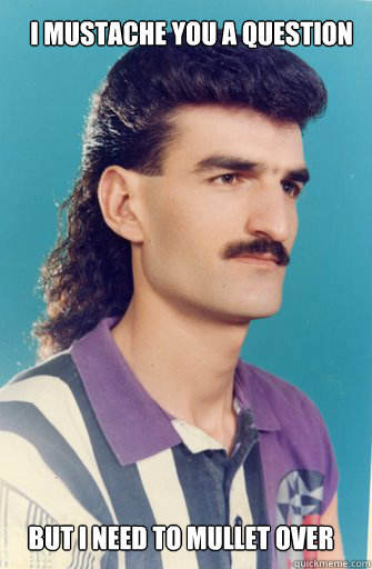 But I need to mullet over I mustache you a question - But I need to mullet over I mustache you a question  Mulletover