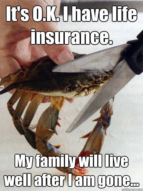 It's O.K. I have life insurance. My family will live well after I am gone... - It's O.K. I have life insurance. My family will live well after I am gone...  Optimistic Crab