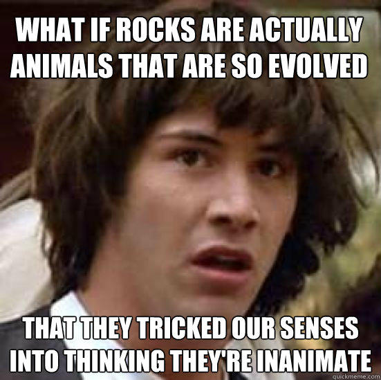 What if rocks are actually animals that are so evolved that they tricked our senses into thinking they're inanimate - What if rocks are actually animals that are so evolved that they tricked our senses into thinking they're inanimate  conspiracy keanu