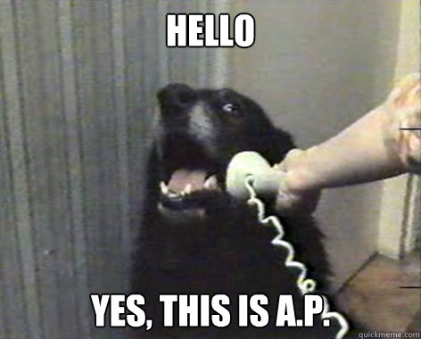 Hello Yes, This is A.P.  ap dog