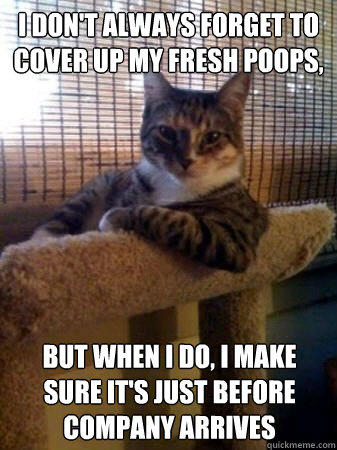 I don't always forget to cover up my fresh poops, but when I do, I make sure it's just before company arrives - I don't always forget to cover up my fresh poops, but when I do, I make sure it's just before company arrives  The Most Interesting Cat in the World