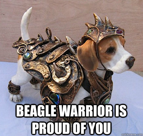 35d3e90b07be4652c183c5ff2421e540e0291ad1b054f0891d598d34ef592dea beagle warrior is proud of you beagle warrior quickmeme,Proud Of You Meme