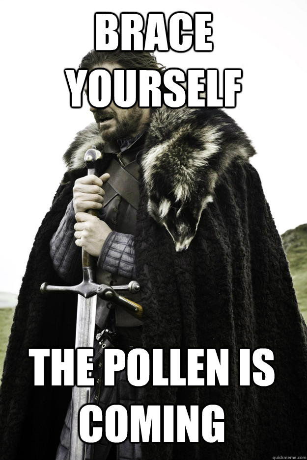 Brace Yourself The pollen is coming - Brace Yourself The pollen is coming  Winter is coming