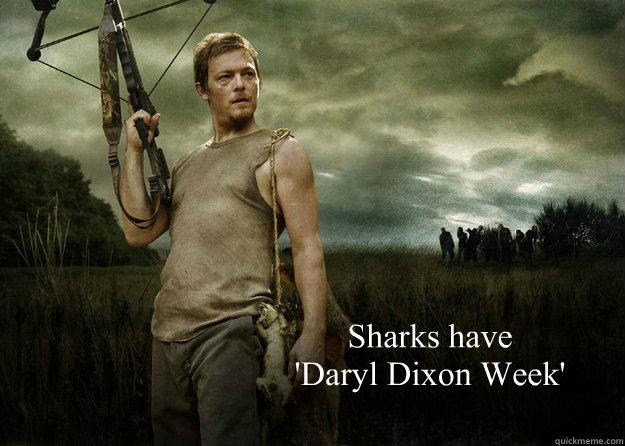 Sharks have  'Daryl Dixon Week'