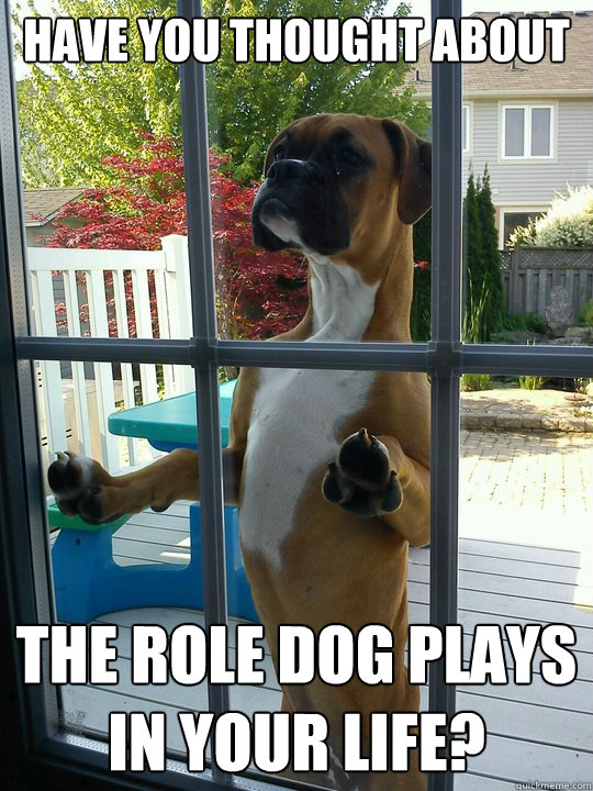 Have you thought about the role dog plays in your life?
