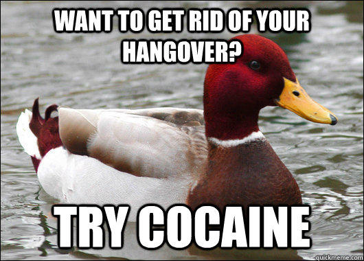 Want to get rid of your hangover? try cocaine - Want to get rid of your hangover? try cocaine  Malicious Advice Mallard