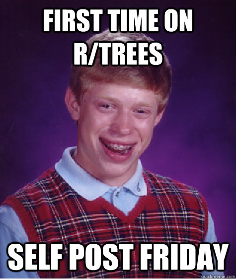 First Time On r/trees Self Post Friday - First Time On r/trees Self Post Friday  Bad Luck Brian
