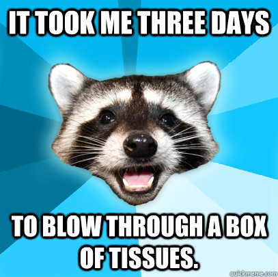 IT TOOK ME THREE DAYS TO BLOW THROUGH A BOX OF TISSUES. - IT TOOK ME THREE DAYS TO BLOW THROUGH A BOX OF TISSUES.  Lame Pun Coon