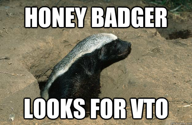 Honey Badger Looks for VTO
