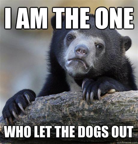 I am the one  Who let the dogs out - I am the one  Who let the dogs out  Confession Bear