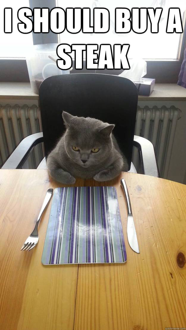I should buy a steak  - I should buy a steak   Hungry Cat