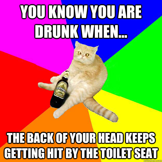 YOU KNOW YOU ARE DRUNK WHEN... THE BACK OF YOUR HEAD KEEPS GETTING HIT BY THE TOILET SEAT
