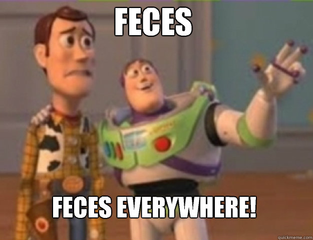 Feces Feces everywhere! - Feces Feces everywhere!  Misc