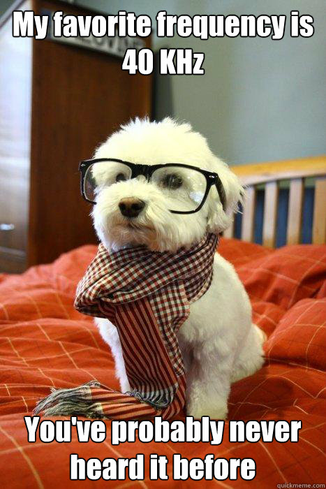 My favorite frequency is 40 KHz You've probably never heard it before - My favorite frequency is 40 KHz You've probably never heard it before  Hipster Dog