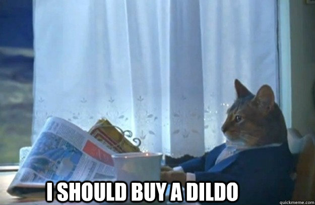 I SHOULD BUY A DILDO - I SHOULD BUY A DILDO  Sophisticated Cat is broke
