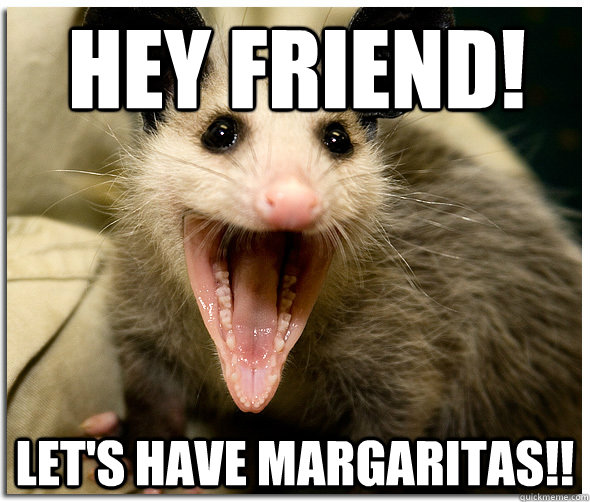 Hey Friend! let's have margaritas!!  Awesome Possum