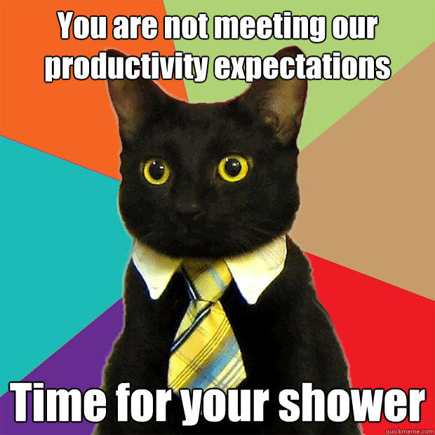 You are not meeting our productivity expectations Time for your shower - You are not meeting our productivity expectations Time for your shower  Business Cat