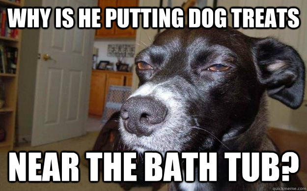 Why is he putting dog treats near the bath tub? - Why is he putting dog treats near the bath tub?  Skeptical Mutt