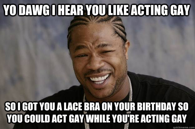 YO DAWG I HEAR YOU like acting gay so I got you a lace bra on your birthday so you could act gay while you're acting gay - YO DAWG I HEAR YOU like acting gay so I got you a lace bra on your birthday so you could act gay while you're acting gay  Xzibit meme