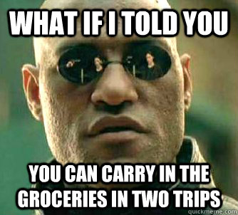 What if I told you you can carry in the groceries in two trips - What if I told you you can carry in the groceries in two trips  What if I told you