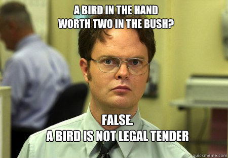 36957b05e1560504426e98840ab6062e3b4dcac237d320dd19e4e2d0efa1afb0 a bird in the hand worth two in the bush? false a bird is not,Tender Meme