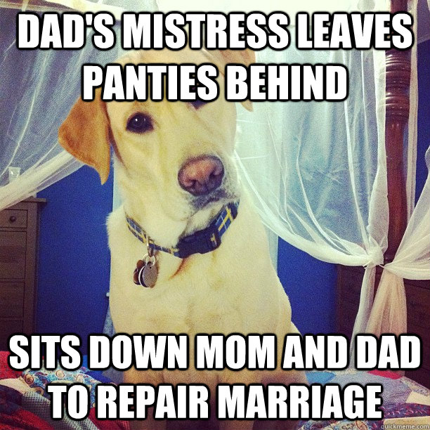 dad's mistress leaves panties behind sits down mom and dad to repair marriage - dad's mistress leaves panties behind sits down mom and dad to repair marriage  Therapist Dog