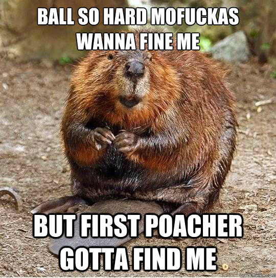 Ball so hard mofuckas wanna fine me But First Poacher gotta find me