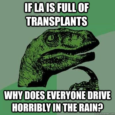 If la is full of transplants why does everyone drive horribly in the rain? - If la is full of transplants why does everyone drive horribly in the rain?  Misc