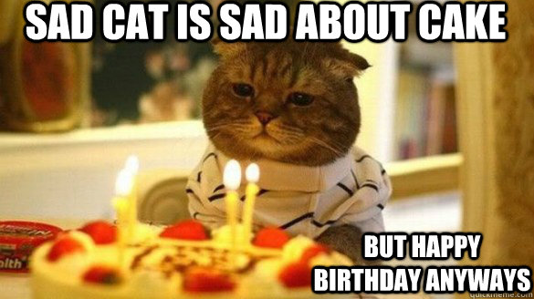 sad cat is sad about cake but happy birthday anyways - sad ...