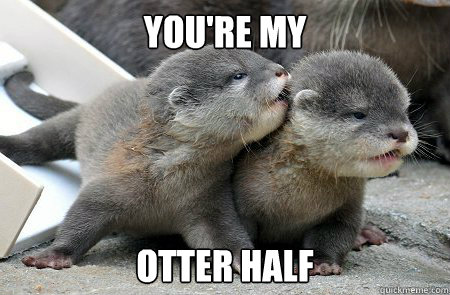 You're my Otter half - You're my Otter half  Otter half
