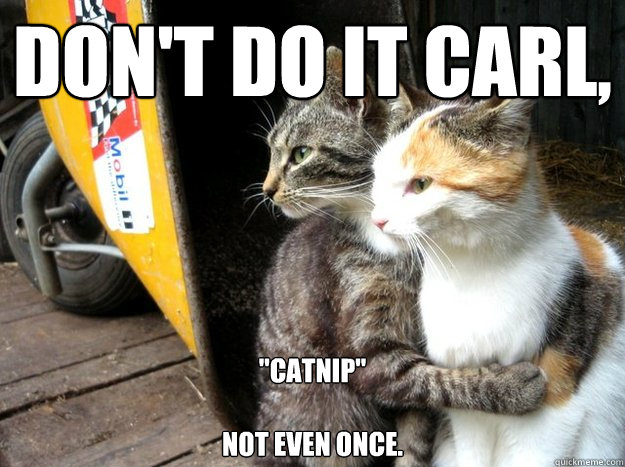 Don't do it Carl,