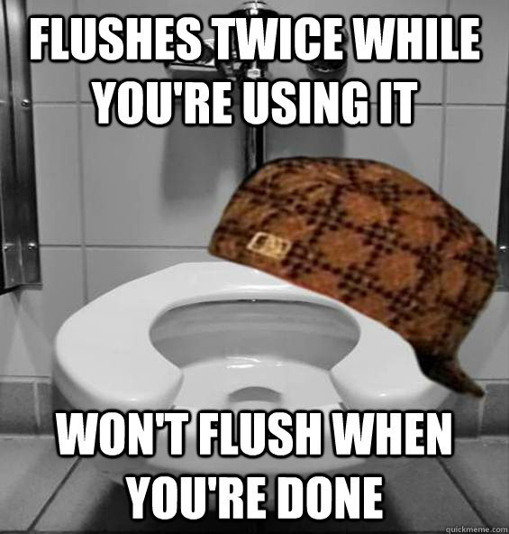 Flushes twice while you're using it Won't flush when you're done