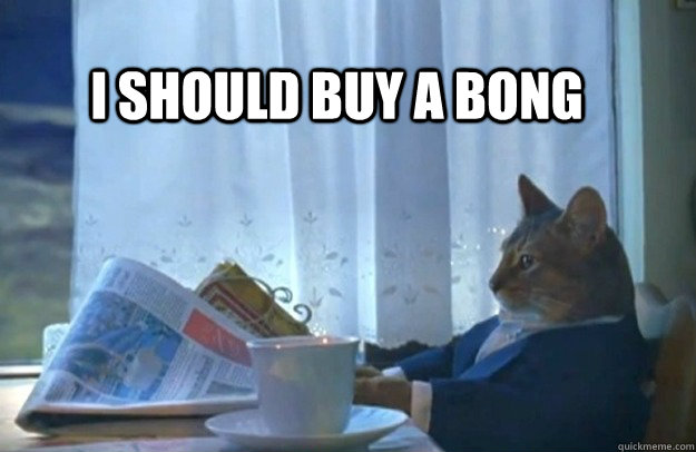 I should buy a bong - I should buy a bong  Sophisticated Cat