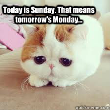Today is Sunday. That means tomorrow's Monday...