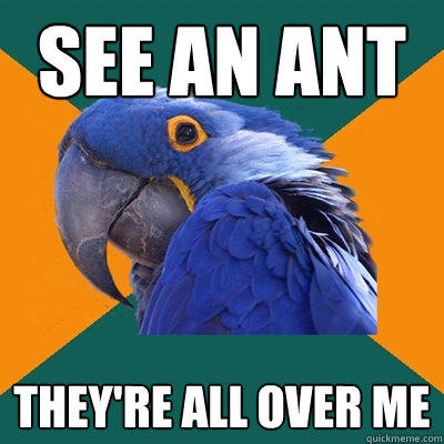 See an ant They're all over me - See an ant They're all over me  Paranoid Parrot